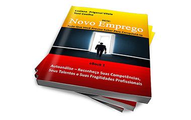 Série Novo Emprego - Tudo Que Você Precisa Saber Para Conquistá-lo - E-BOOK 1