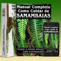 Manual Completo Como Cuidar de Samambaias