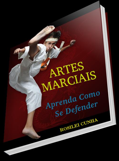 ARTES MARCIAIS - Aprenda Como Se Defender