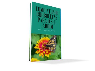 Como Atrair Borboletas para o seu Jardim