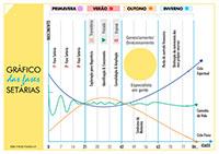 Gráfico das Fases Setárias