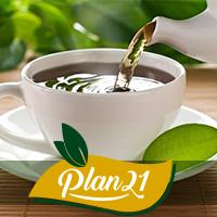 Plan21 - Complexo de Chás