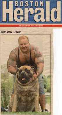 O maior cachorro do mundo