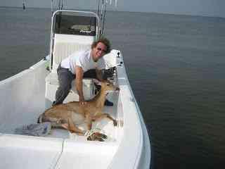 Dois caras pegando um veadinho no barco