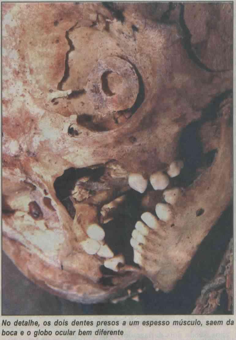 Museu Brasileiro vai expor suposto esqueleto de extraterrestre