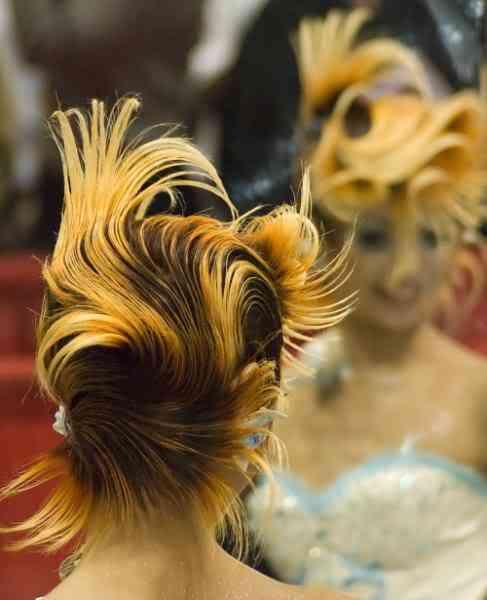 Fotos bizarras de uma exposição de penteados
