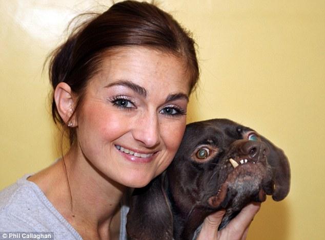 O novo cachorro mais feio do mundo?