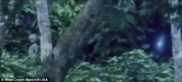 Aliens registrados em video na Amazônia?
