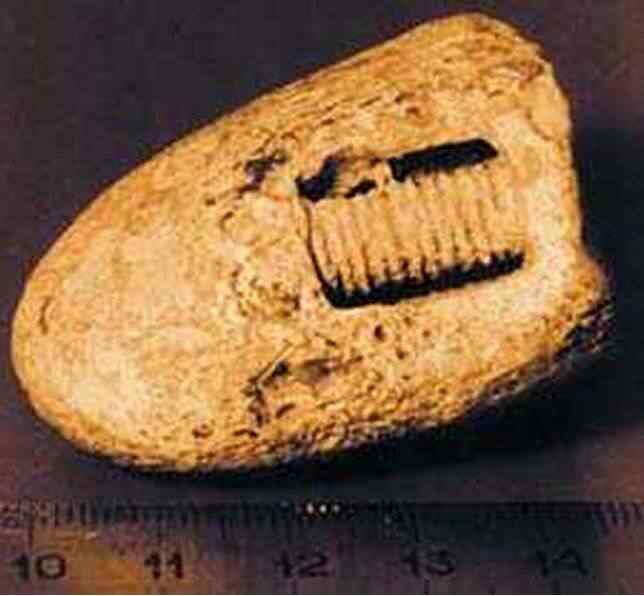 Um misterioso parafuso de 300 milhões de anos?