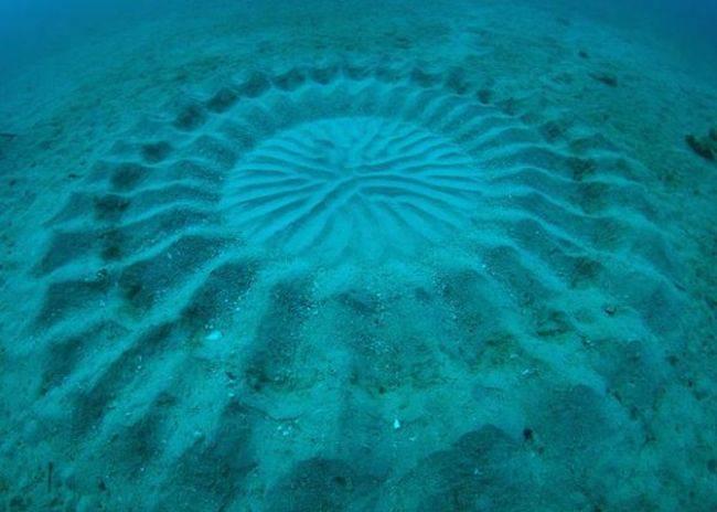 As misteriosas marcas no fundo do mar