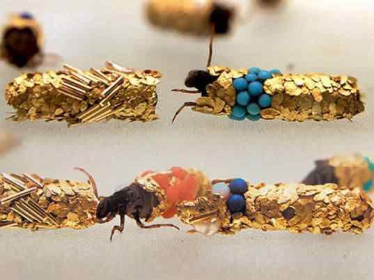Jóias feitas por insetos