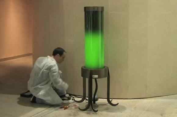 18422.31881-Lampada-algas