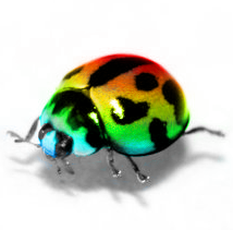 Rainbow Beetle by digitalsprite Top seres coloridos