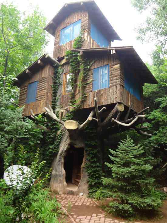 thats-a-treehouse (1)