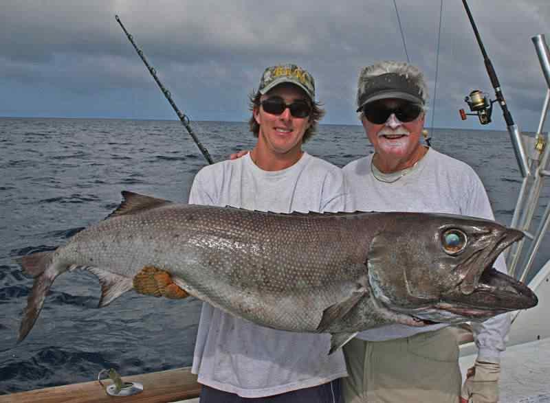 Olha aqui o Oilfish.