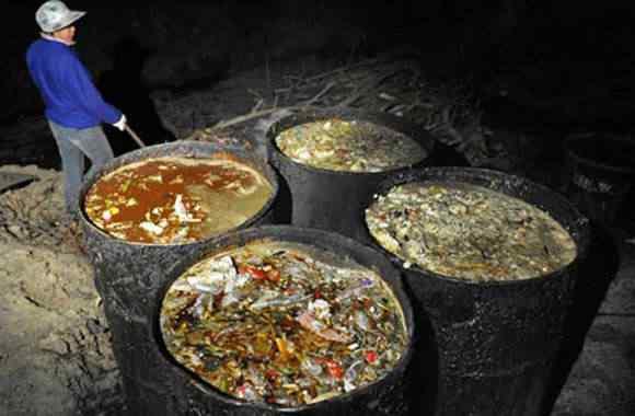 gutter oil Comida feita no óleo de esgoto   Mais nojeira direto da China