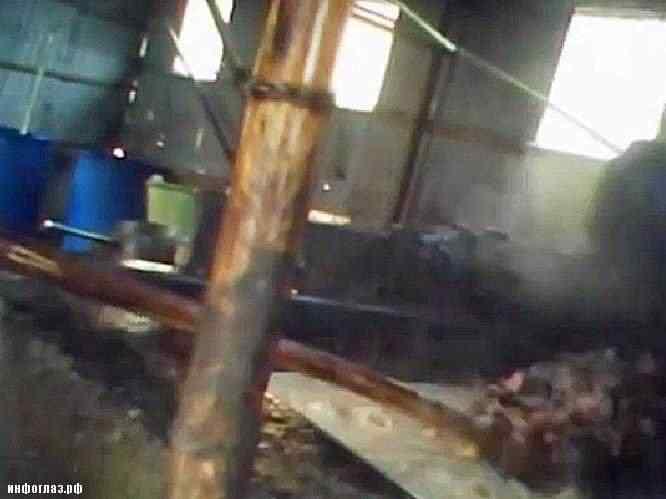 oil 461 Comida feita no óleo de esgoto   Mais nojeira direto da China