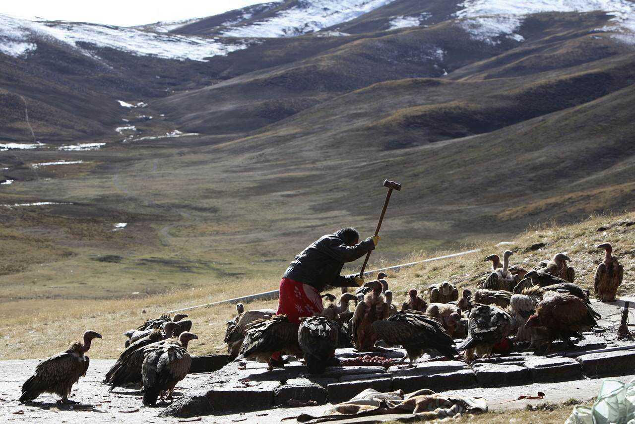 0 ef76c 7a0daec8 orig Sepultamento celestial no Tibete (AVISO: não recomendado para pessoas impressionáveis)