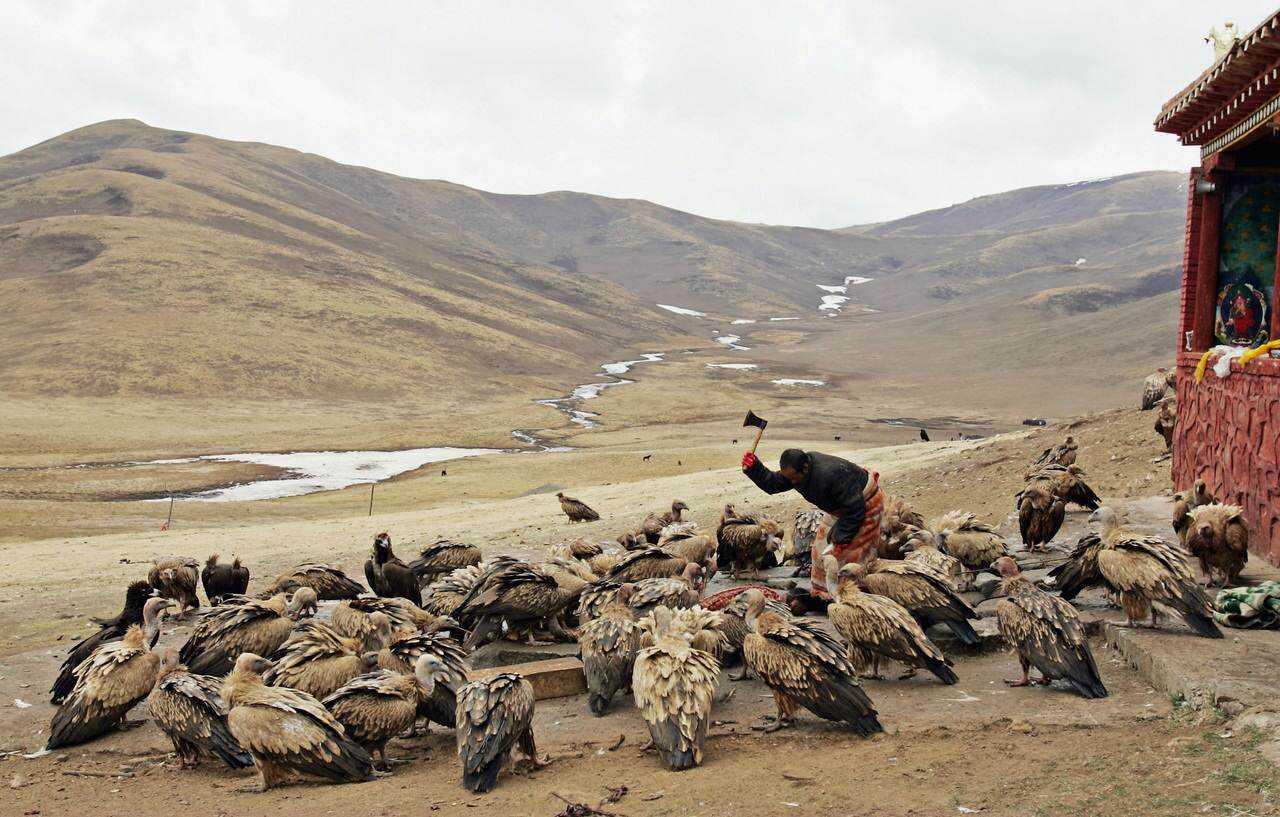 0 ef76f 26e029b3 orig Sepultamento celestial no Tibete (AVISO: não recomendado para pessoas impressionáveis)