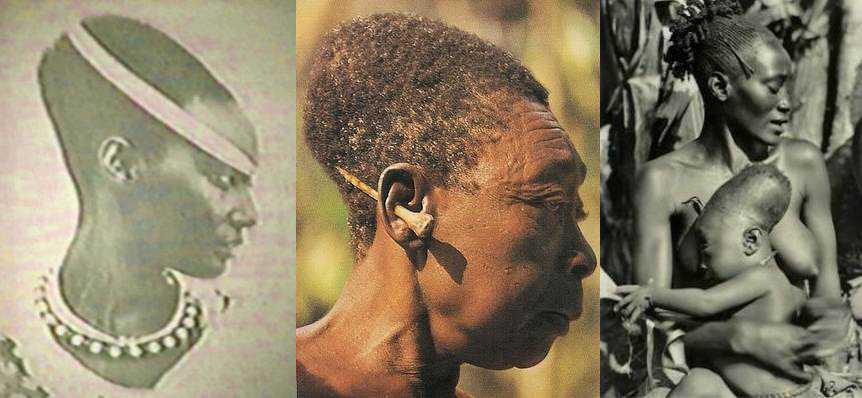modern-genetic-remnant-elongated-heads