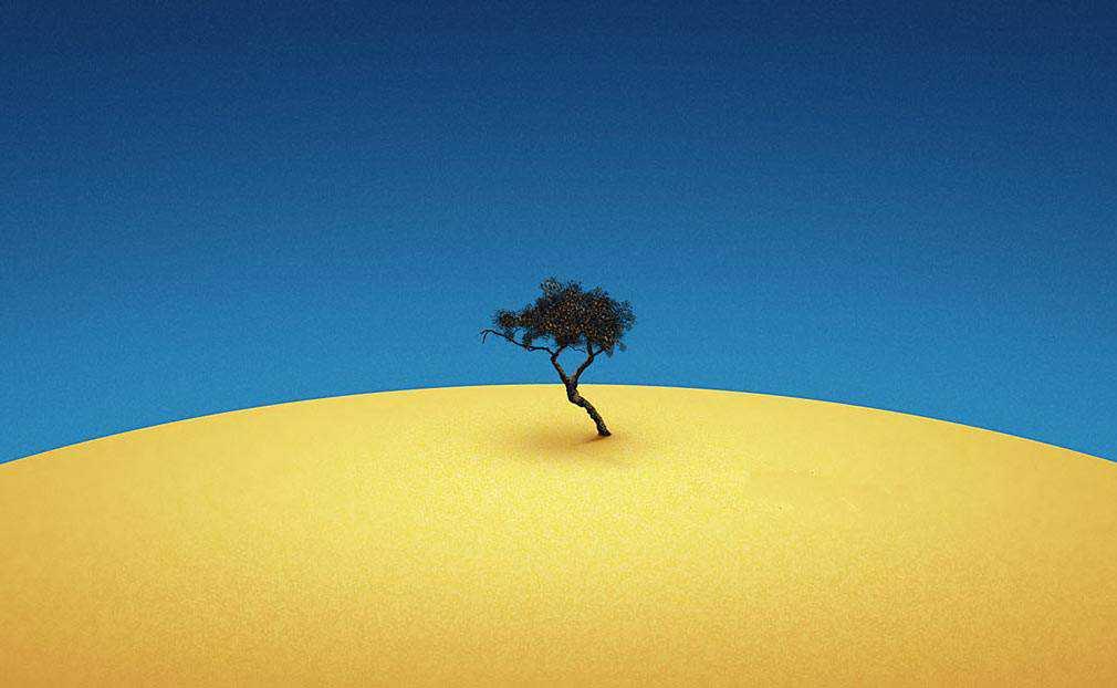 Tenere Tree