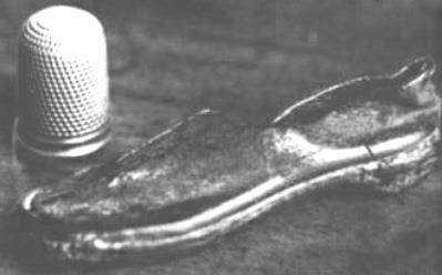 O mistério do pequeno sapato