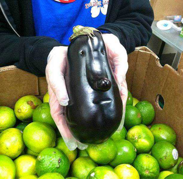 vegetables_that_are_desperately_trying_to_be_something_else_640_01