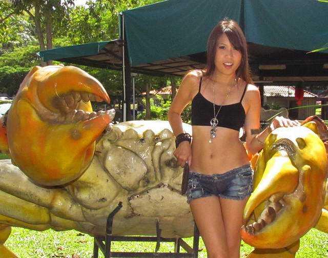 A prova de que existem sim caranguejos gigantes - de fibra de vidro!