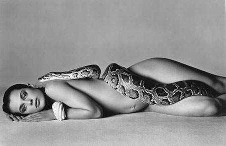 avedon21 Dez cobras lindas