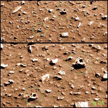 Ao longo dos anos, muitos dizem ver fósseis onde a Nasa afirma ser somente pedras e pareidolias.