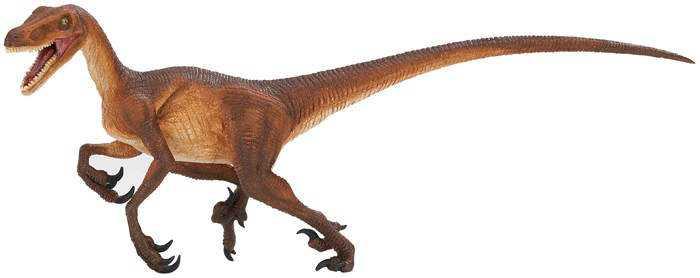 velociraptor_wildsafari