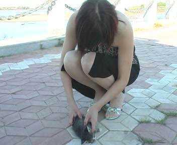 Ela deita o filhote de gato no chão