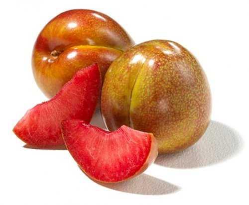 10104 Cruzamentos loucos de frutas que você nunca pensou que existisse