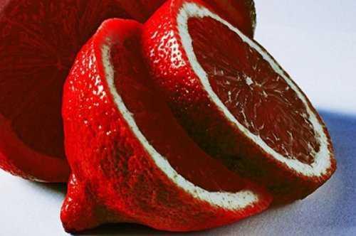 11147 Cruzamentos loucos de frutas que você nunca pensou que existisse