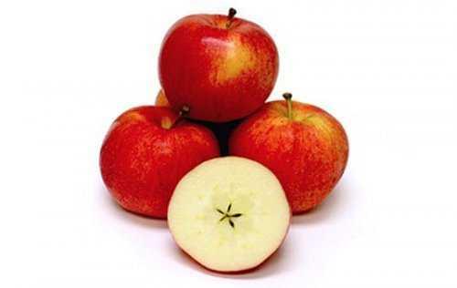 1394 Cruzamentos loucos de frutas que você nunca pensou que existisse
