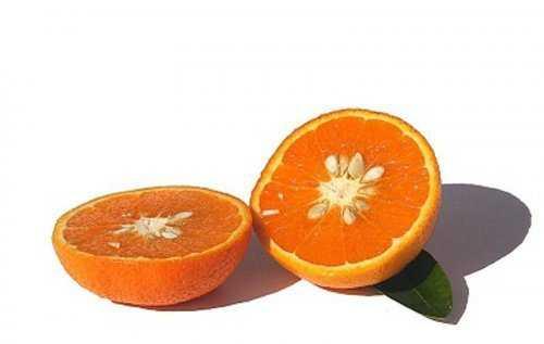 2261 Cruzamentos loucos de frutas que você nunca pensou que existisse