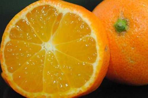 5162 Cruzamentos loucos de frutas que você nunca pensou que existisse