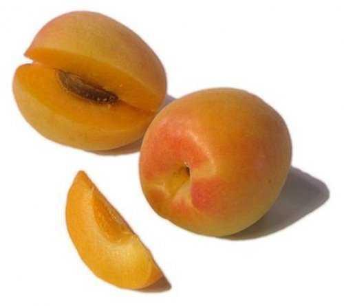 8102 Cruzamentos loucos de frutas que você nunca pensou que existisse