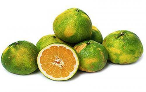 9102 Cruzamentos loucos de frutas que você nunca pensou que existisse