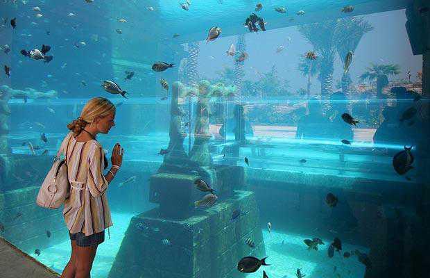 aquarium-woman_998074i