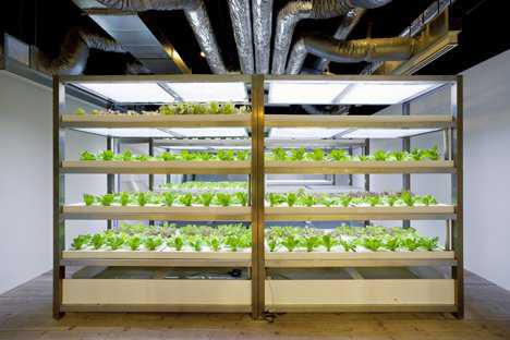 dezeen_pasona-urban-farm_17