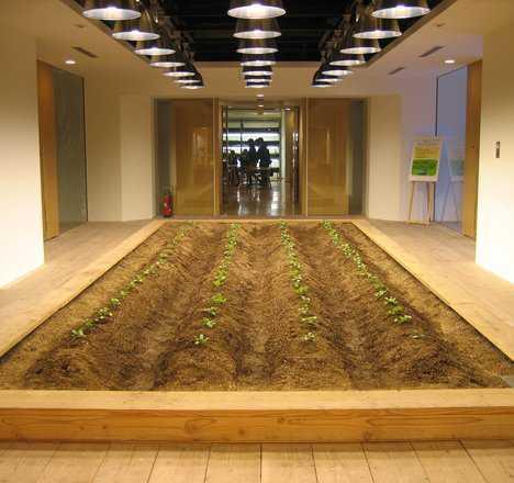dezeen_pasona-urban-farm_34