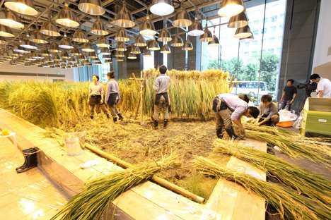 dezeen_pasona-urban-farm_7