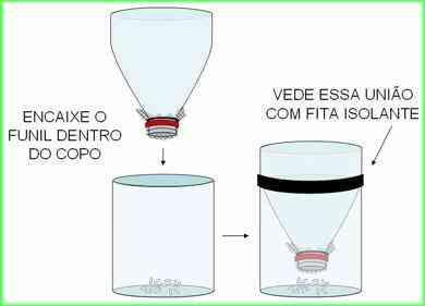 Armadilha para mosquito da dengue com garrafa Pet 7 Pernilongo: O maior desafio do mundo