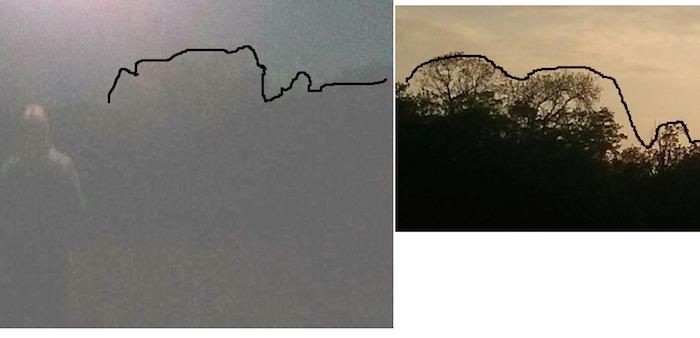 O dono do cellar acredita que as árvores da imagem indiquem um bosque perto de sua casa