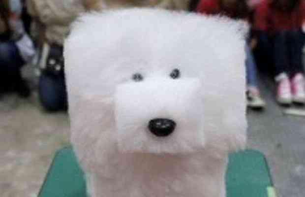 squaredogfeature