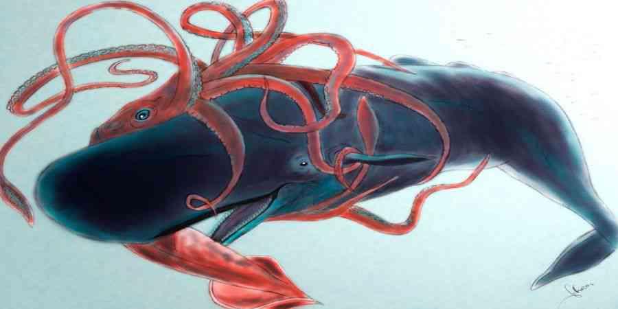 Lulas gigantes e cachalotes são inimigos naturais