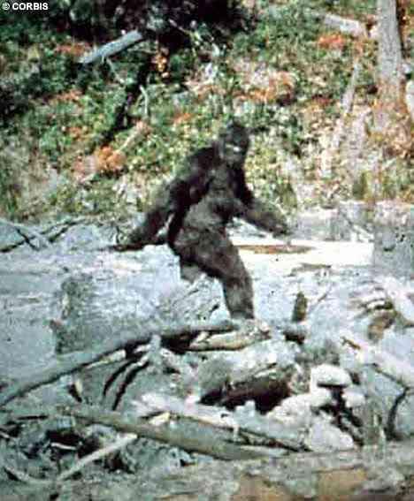 Um dos primeiros registros modernos da criatura foi feita com uma câmera de cinema