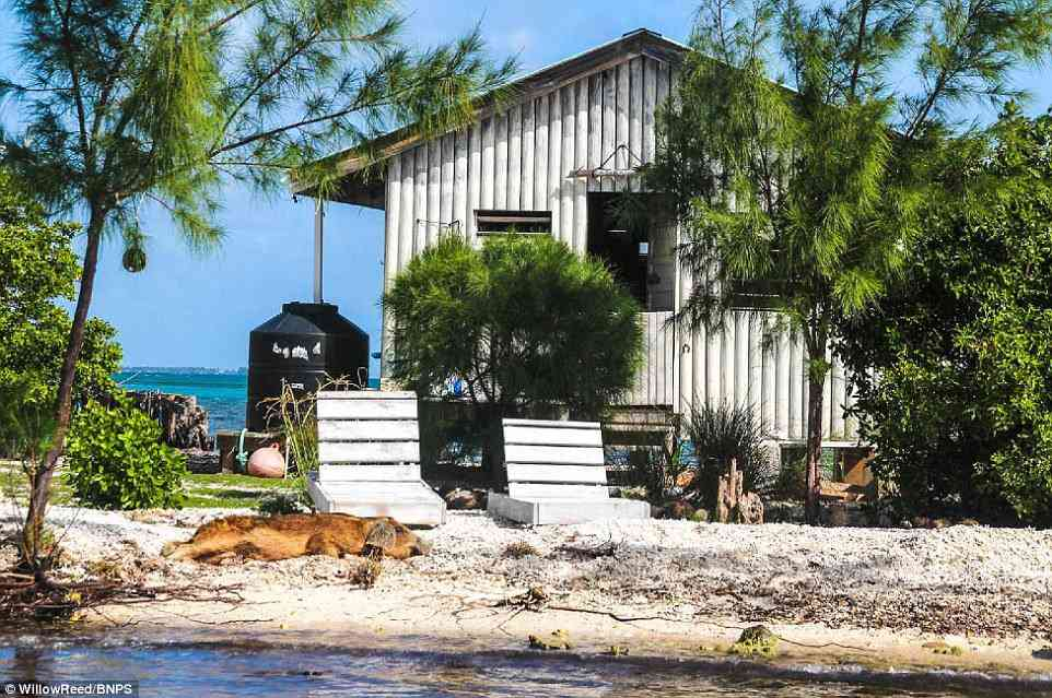 Uma cabana à venda por mais de um milhão e meio de reais