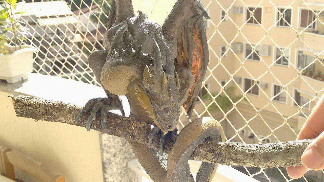 Angelus - O filhote de dragão